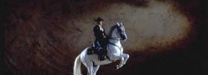 Como bailan los caballos andaluces benidorm 2013