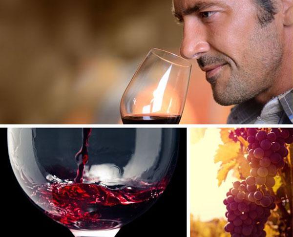 cata de vino en semana santa en benidorm